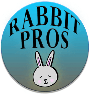 Logo For Rabbit Pros Website