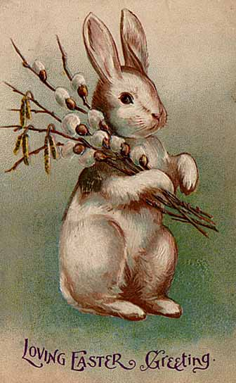 1907 Easter bunny Post Card