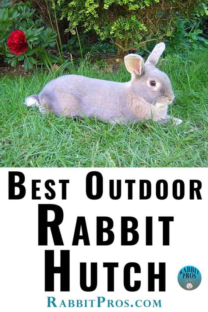 """Image of bunny on grass with text """"Best Outdoor Rabbit Hutch"""